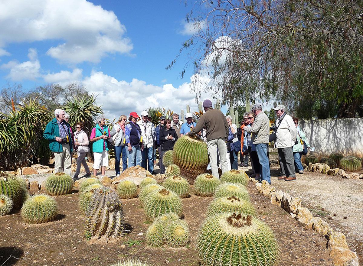 Besuch des Jardin de Cactus auf Lanzarote bei unserer Reise zu fünf Kanarischen Inseln