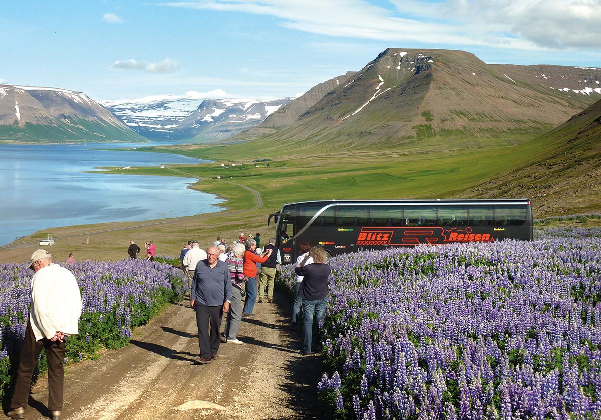 Ein Blitz-Bus beim Fotostopp in Island