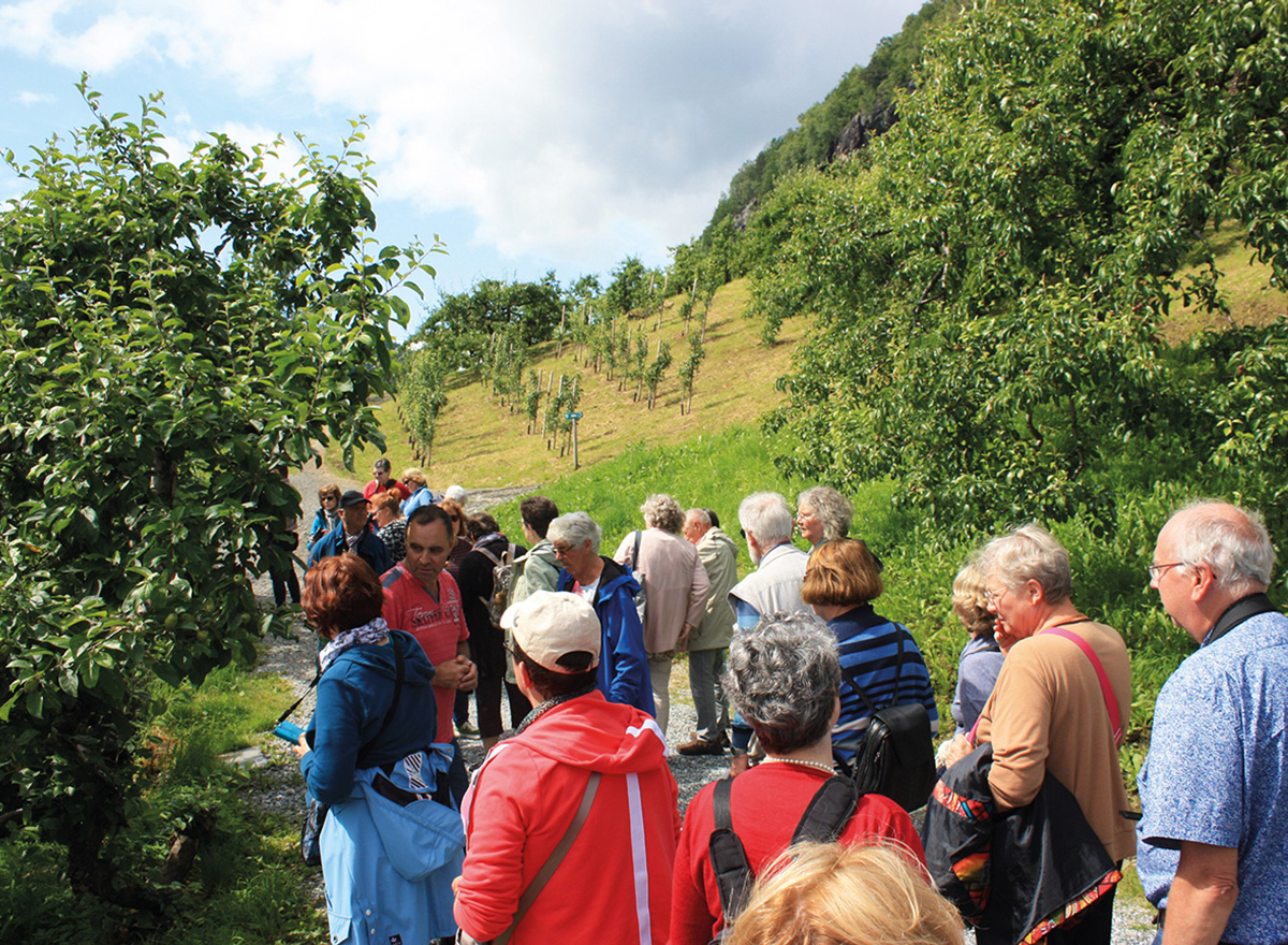 Eine Blitz-Gruppe bei der Führung auf dem Steinstø-Fruchthof am Hardangerfjord in Norwegen